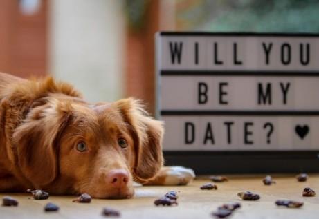 Die besten Speed Dating Tipps: Was du beachten musst